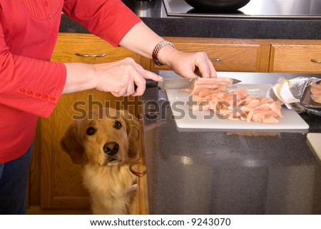 """Mmm that chicken looks yummy"" - stock photo"