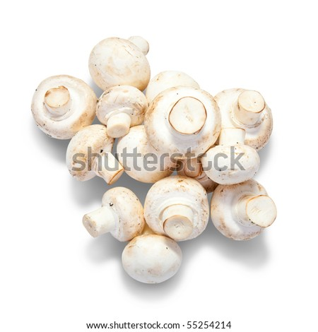mushroom. Isolated over white with clipping path - stock photo