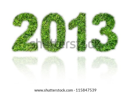 2013 New Year sign of green grass over white background. Eco concept - stock photo