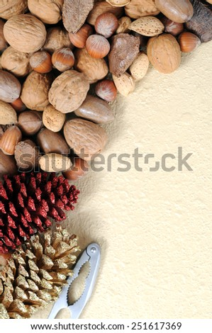 nuts in shell, pine and cracker on the table  - stock photo
