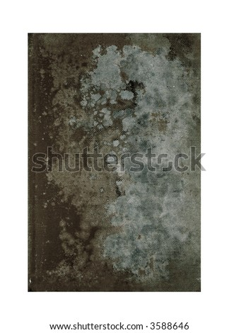 old moldy book - stock photo