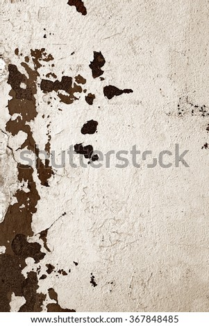 Old wall background / Damaged wall / Old facade