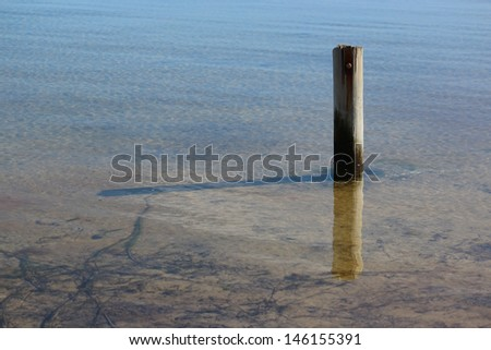 Old wooden poles in the    Leschenault Estuary Peninsula   conservation park near Australind  Western Australia on a calm day in early winter.