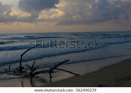 on the beach at sunset with the sun in the background - stock photo