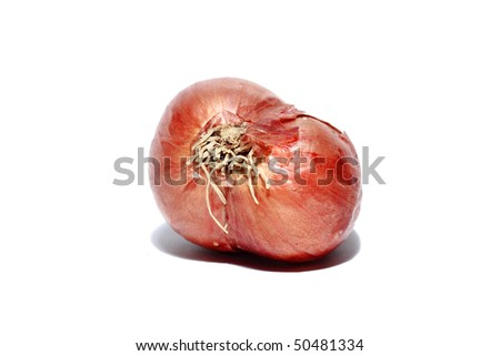 Onions isolated over white background
