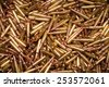 .223 or 5.56 x 45 xm193 ammunition  - stock photo