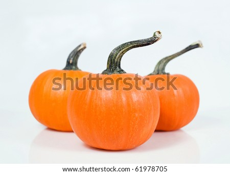 3 orange pumpkins isolated on white, shallow depth of field with focus on foreground pumpkin