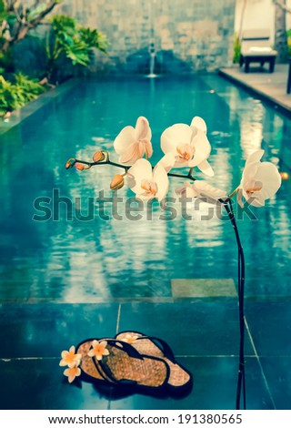 orchid and slippers (out of focus) before pool,with a retro effect - stock photo