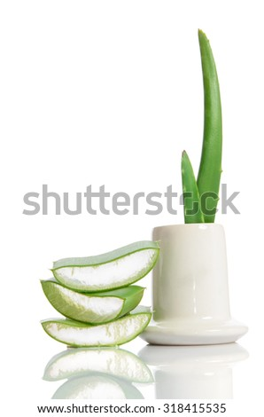 organic aloe vera isolated on white