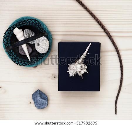 Original composition with seashells                   - stock photo