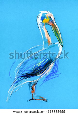 Original pastel and  hand drawn painting or  working  sketch of a  pelican.Free composition - stock photo