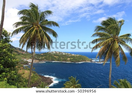 2 palm trres framing picture of St. Vincent in the Caribbean - stock photo