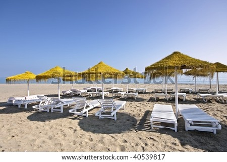 Parasols in summer at the beach