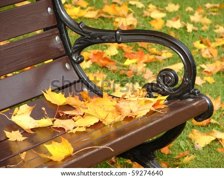 Park grunge bench in autumn close up - stock photo