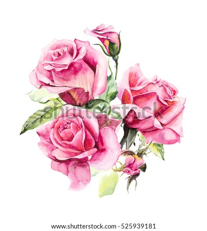 Pattern From Pink Rose Wedding Drawings Watercolor Painting