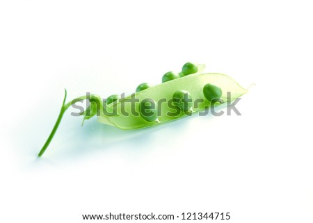Pea isolated on white close up - stock photo