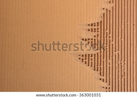 Peeled Corrugated Board Showing The Fluted Corrugated Sheet
