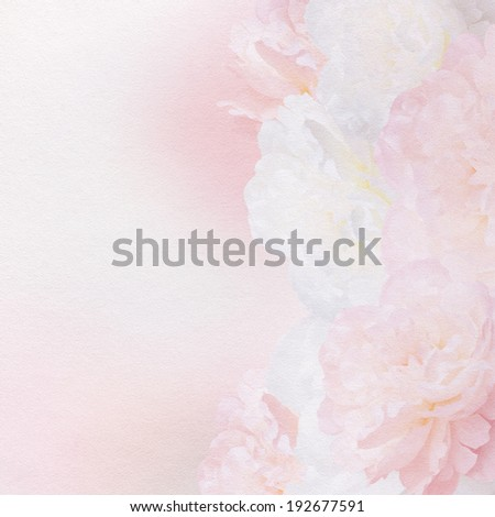 Peony flower on pastel background with copy space. - stock photo