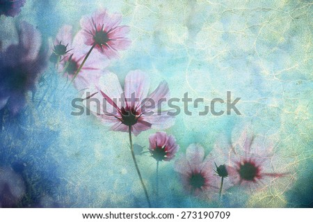 Photo of a flowers pasted on a grunge background - stock photo
