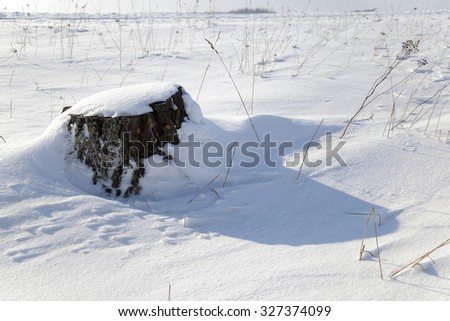 photographed closeup stump in the winter time. covered in snow