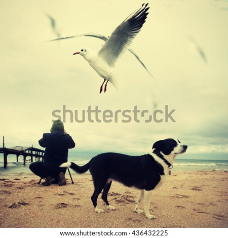 photographer with dog on the beach and flying seagull