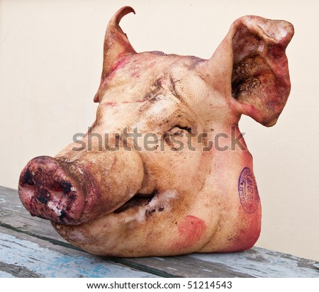 Pig's head chopped off - stock photo
