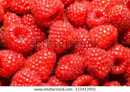 piled berries of mature red raspberry - stock photo