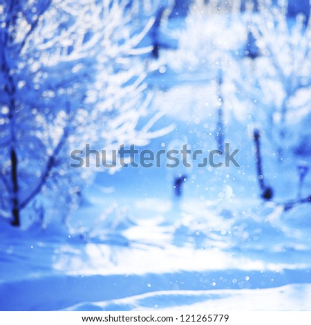 pine forest in snow - stock photo