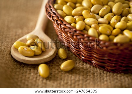 Pinto Beans in a wooden bowl - stock photo