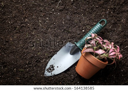 planting flowers in flower soil, with garden tools  - stock photo