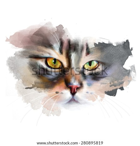 portrait of a beautiful cat, with an angry face, isolated on white background, watercolor illustration - stock photo