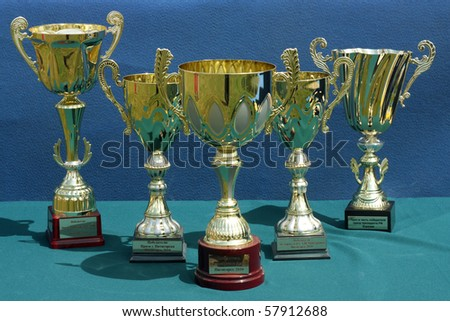 PYATIGORSK, RUSSIA  - JULY 25:  Holiday thoroughbred stud.Prizes winners.July 25; 2010 in Pyatigorsk; Caucasus; Russia.