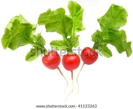radish isolated - stock photo