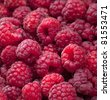 raspberries - stock photo