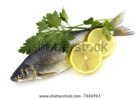 Raw fish with lemon and parsley isolated on white background - stock photo