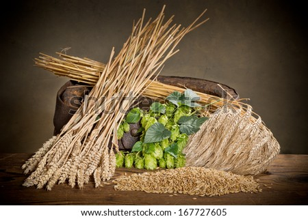 raw material for beer production - stock photo