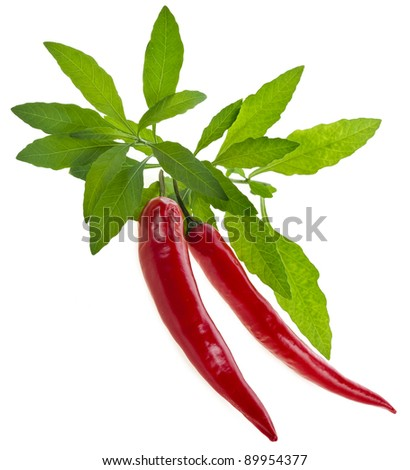 red hot peppers on a white - stock photo