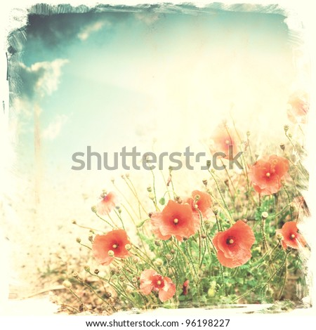 red poppy flowers ; vintage background ; illustration - stock photo