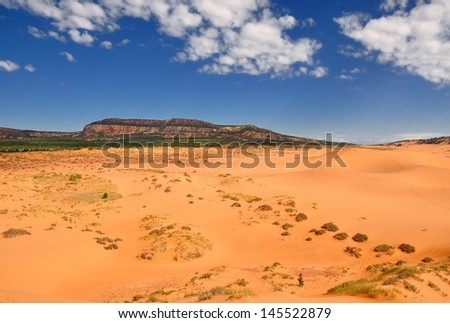 Red sandstone cliffs in Coral pink sand dunes state park. The park is located near Kanab in Utah - stock photo