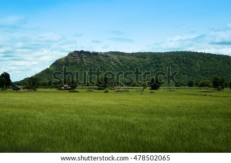 rice farm and a little house near rock mountain