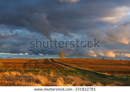 �?right evening landscape with �°rable land and picturesque sky.