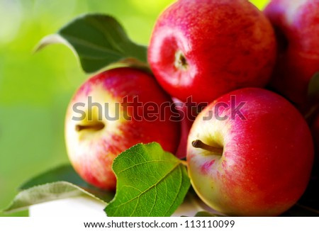 ripe red apples on table, green background