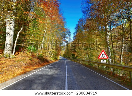 road .a series of pictures of autumn road  - stock photo