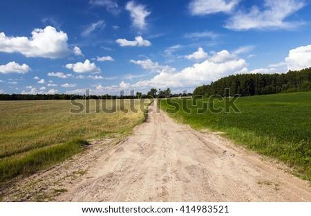 road, located in the countryside in the spring (summer) season