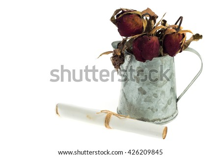 rolled old paper and dry roses on white background. - stock photo