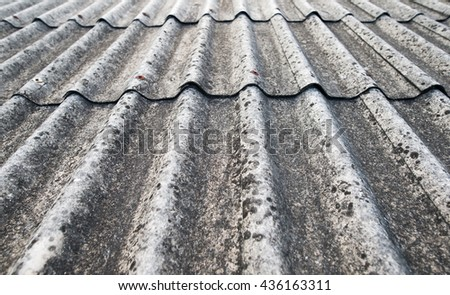 Awesome Roof With Fungus Background.