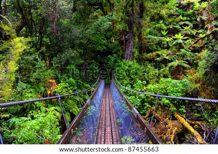 Rope bridge on the Lake Waikaremona Great Walk, New Zealand - stock photo
