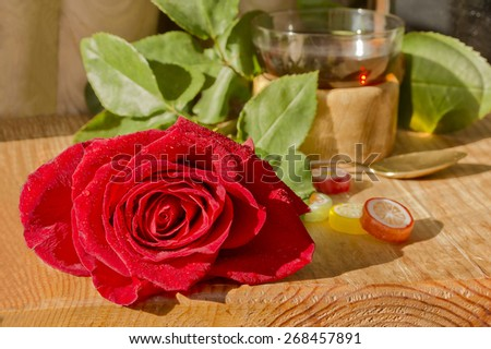 Rose, green leaves ,tea Cup,lollipops.On a wooden table. - stock photo
