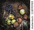 Rotting Apples and Grapes on a Compost Heap/Artistically alienated to create a grungy somber atmosphere - stock photo