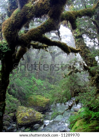 Routeburn Track - stock photo